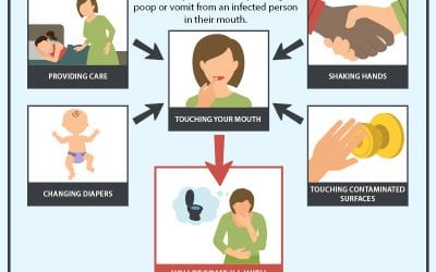 How You Get Norovirus From People Or Surfaces